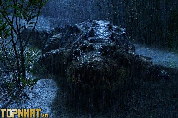 Gustave - Cá sấu khổng lồ được làm thành phim