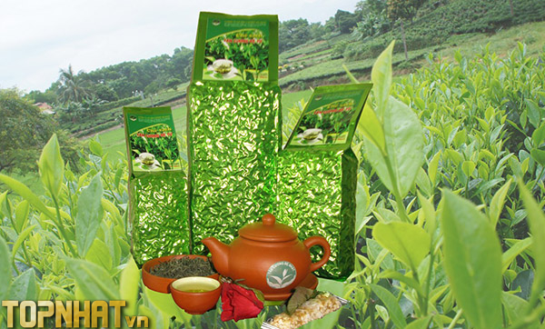 Chè Tân Cương - Đặc sản số 1 Thái Nguyên