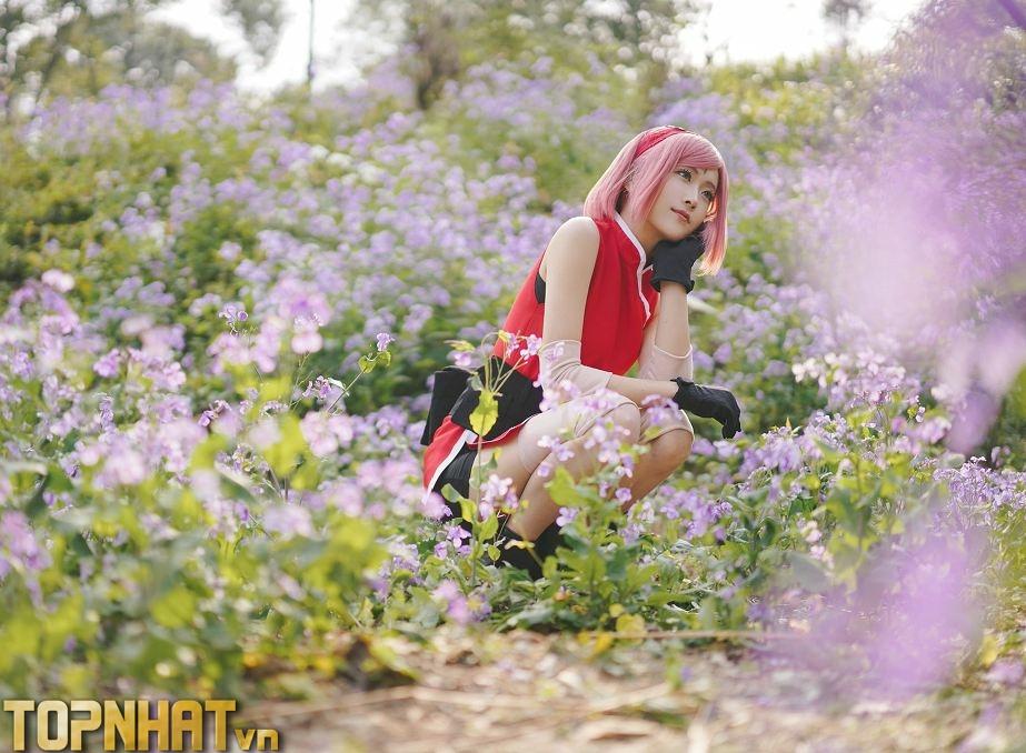 Cosplay Sakura mới - Ảnh 1