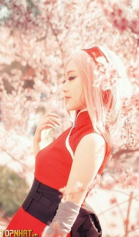 Cosplay Sakura mới - Ảnh 16