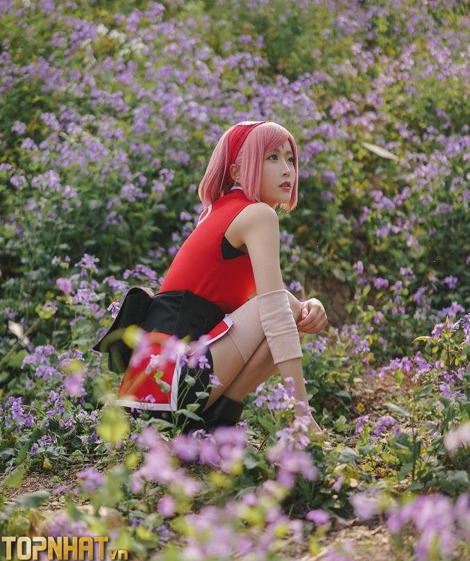 Cosplay Sakura mới - Ảnh 2