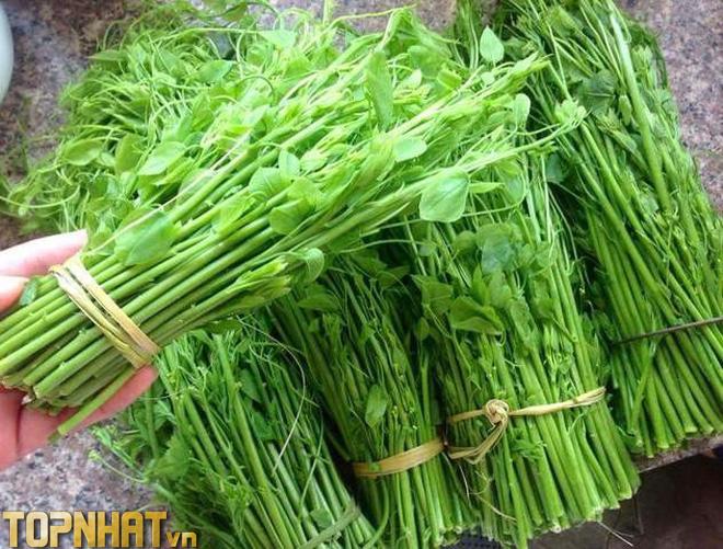 Rau bò khai - đặc sản Thái Nguyên