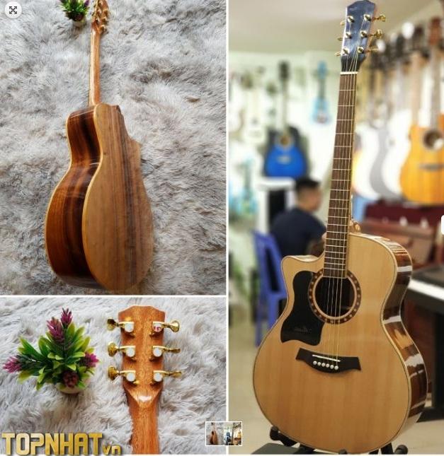 Mua đàn Guitar cao cấp tại Shop Guitar Việt