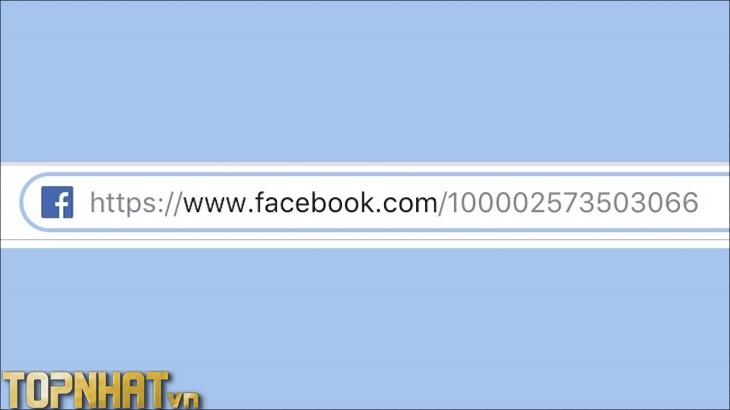 Tìm trang Facebook tương ứng với ID vừa tìm được